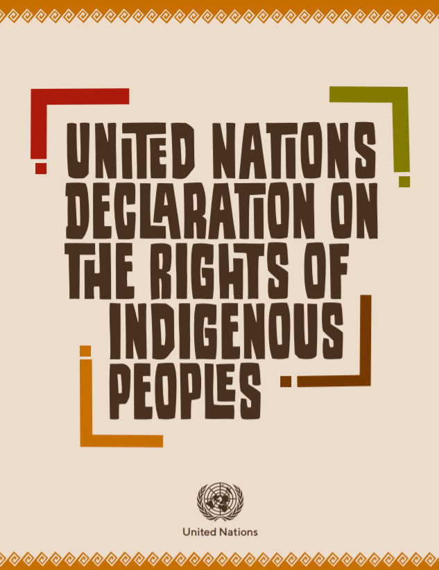 Cover photo for the Declaration of the Rights of Indigenous People